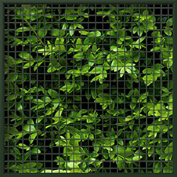NatureScreen_MeshOption_2x2_ivy