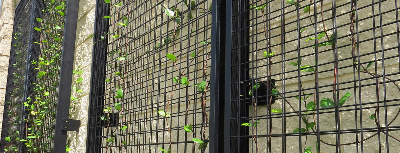 NatureScreen by CityScapes